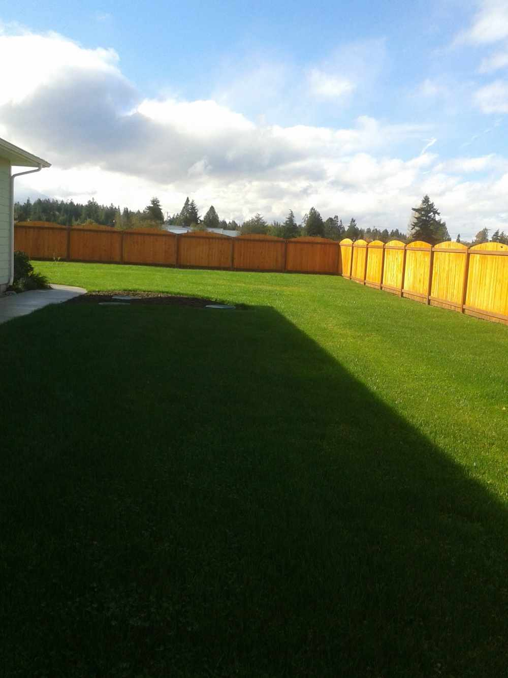 Lawn Care Services Sequim and Port Angeles